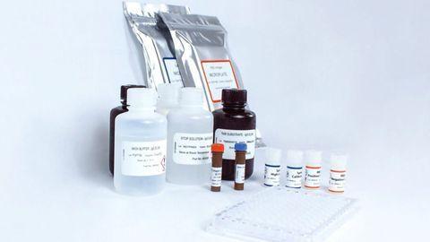 EKF Introduces Accurate Quantitative COVID-19 Antibody Test Kit