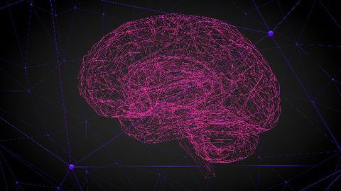 BioMed X Institute Completes First Research Project in Neuroscience