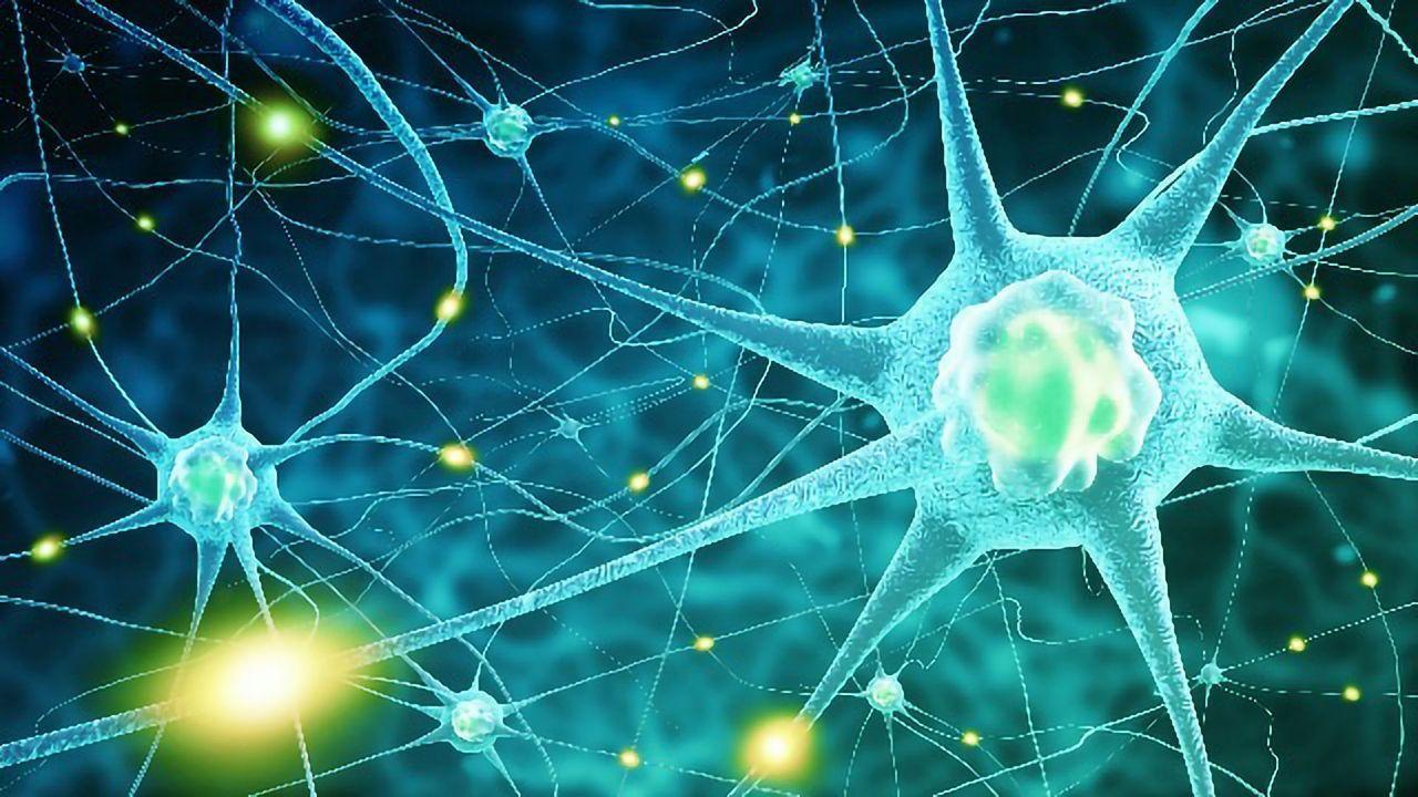 5-Minute EEGs Could Help Researchers Peer Inside the Parkinson's Brain