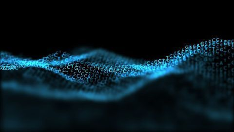 Genetic Shortcut Helps Visualize Proteins at Work