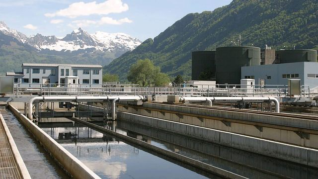 Purifying Wastewater With a Multitasking Microbe