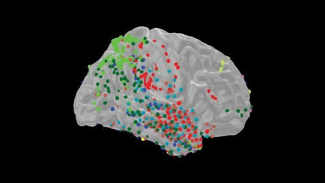 High-Frequency Brain Waves Help Us Spot Small Differences