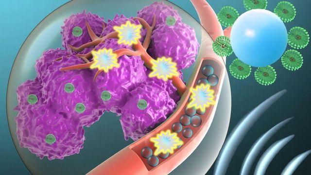Targeting Cytotoxic Drugs to Tumors Using Microbubbles