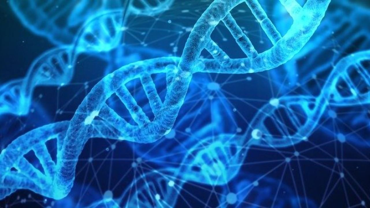 Using More Genomic Data Increases Accuracy of Breast Cancer Risk Assessment