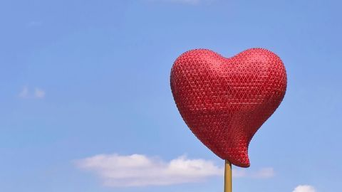 Network of Genes Involved in Congenital Heart Disease Identified