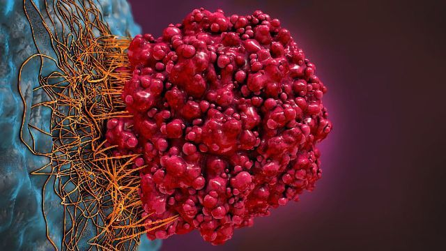 Preventing Tumors From Repairing Their Own DNA
