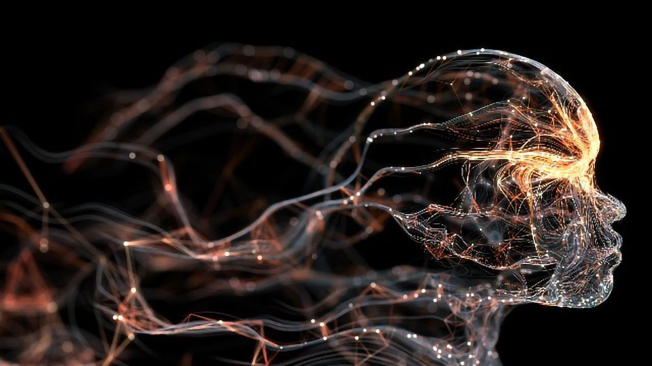 The Brain Region That Helps Learned Information Last