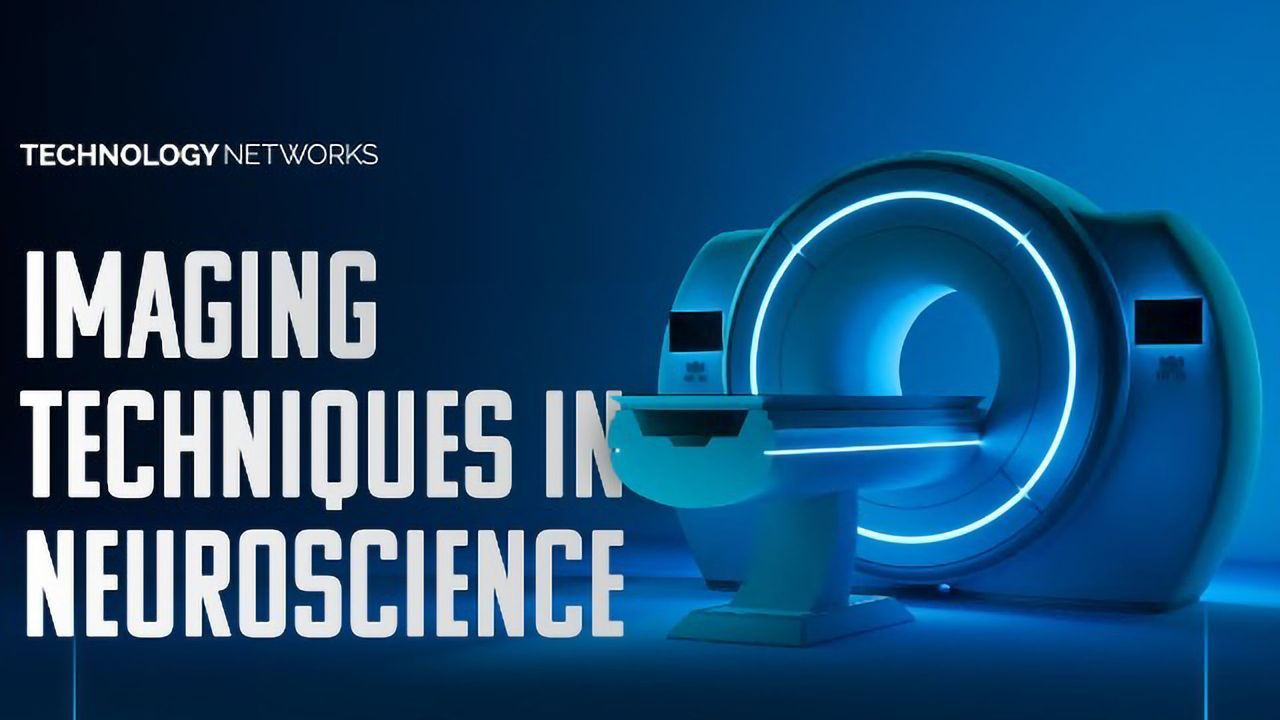 Imaging Techniques in Neuroscience