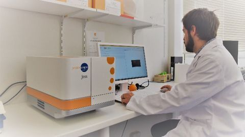 An Automated Age for Western Blotting
