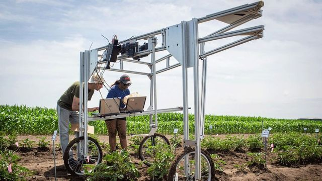 Screening for favorable crop properties using photosynthetic light