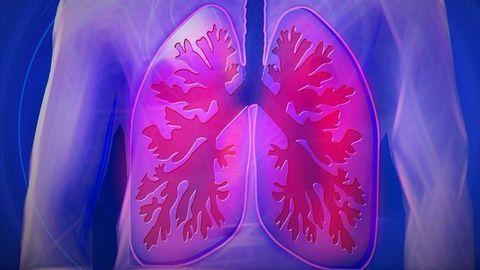 Novel Drug Compound Designed To Treat Respiratory Diseases