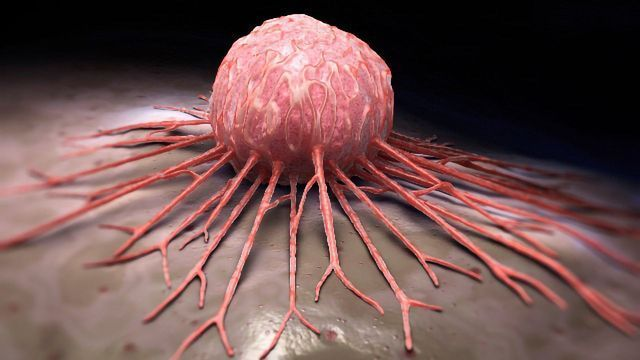 Small Molecule-Based Drug Combo Could Help To Inhibit Growth of Neuroblastoma