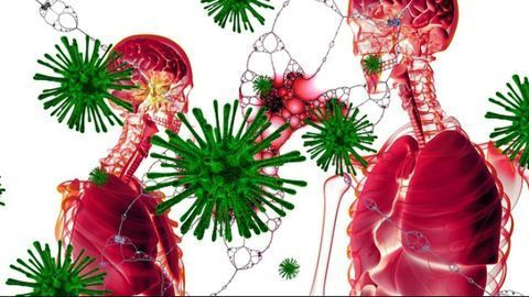 Long-Lasting Immune Cells in Lungs May Help To Defend Against Subsequent Viral Infection