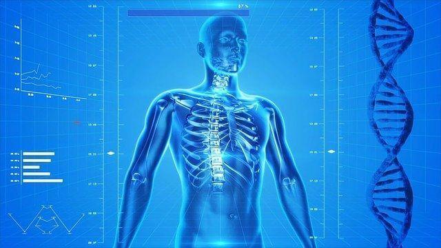 Surprising Behavior of T Cells Could Explain Some Bone Loss