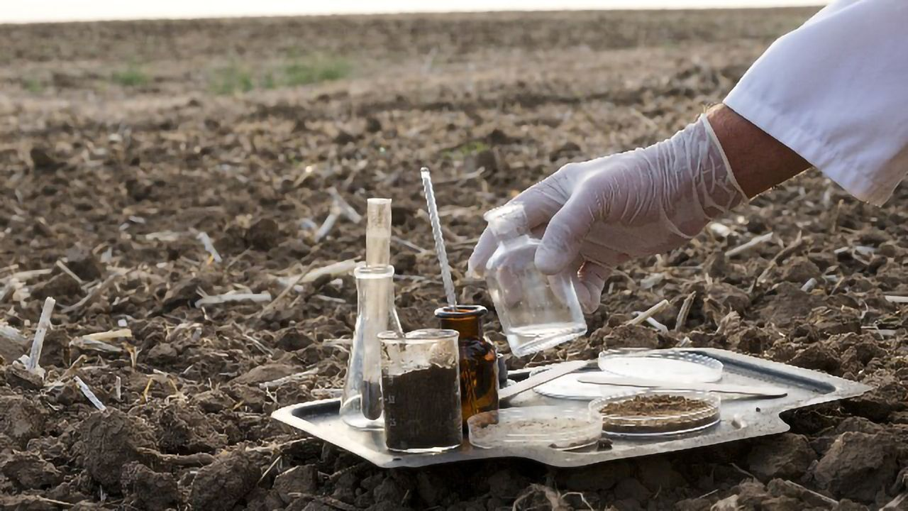 Tackling Local and Global Challenges With Soil Analysis