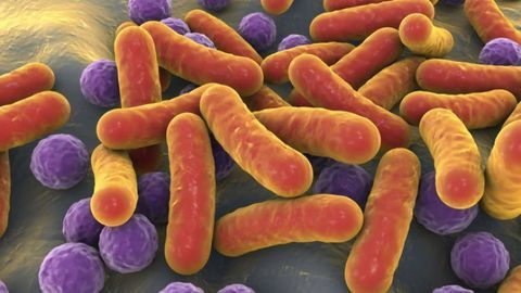 Painting a Clearer Picture of the Cancer Microbiome