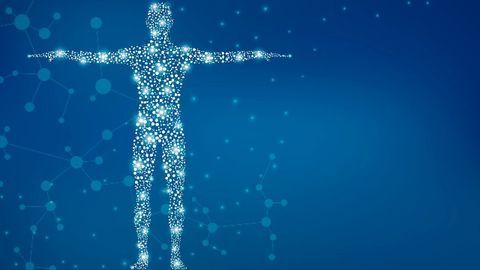 Videos Illuminate RNA's Mysterious Folding Process