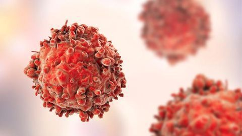Understanding How Cancer Cells Adapt To Survive Harsh Tumor Microenvironments