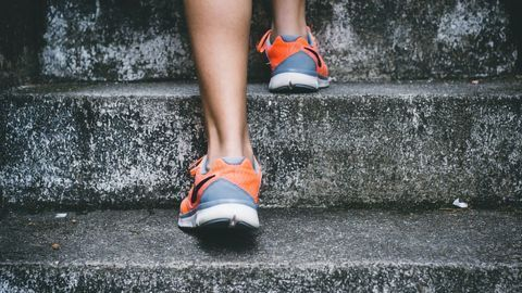 Lab-Grown Muscle Shows That Exercise Dampens Chronic Inflammation
