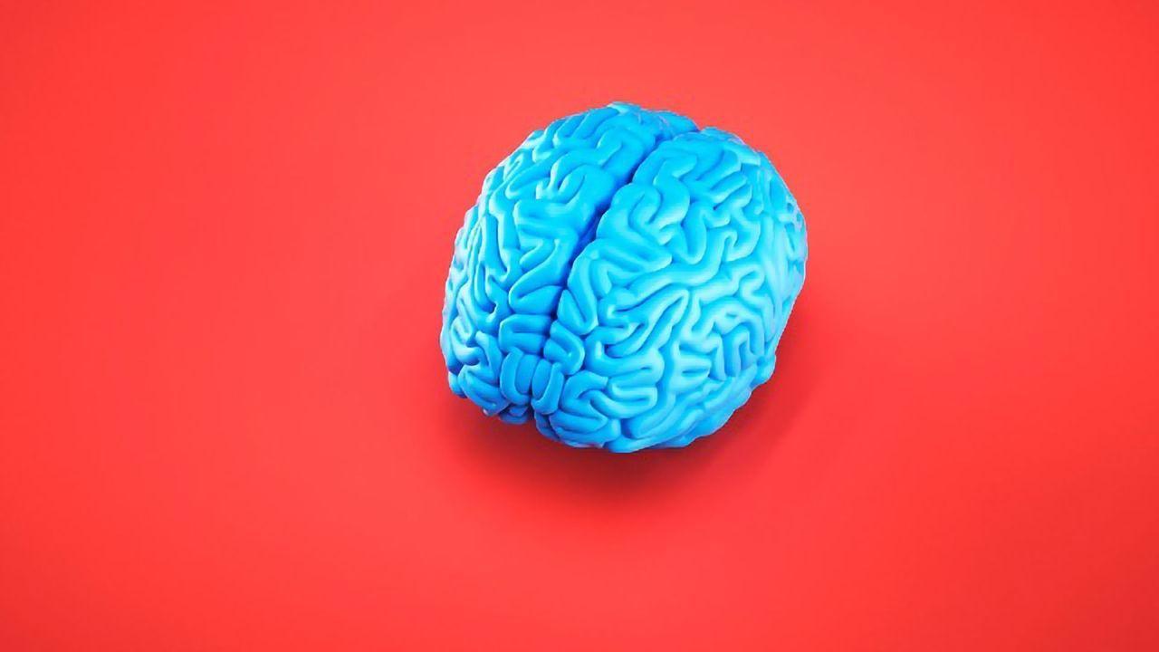 Alzheimer's Protein Deposits Link to a Hyperexcitable Brain