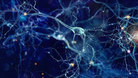 In Multiple Sclerosis, Inflammation Can Lead to Neuronal Silencing