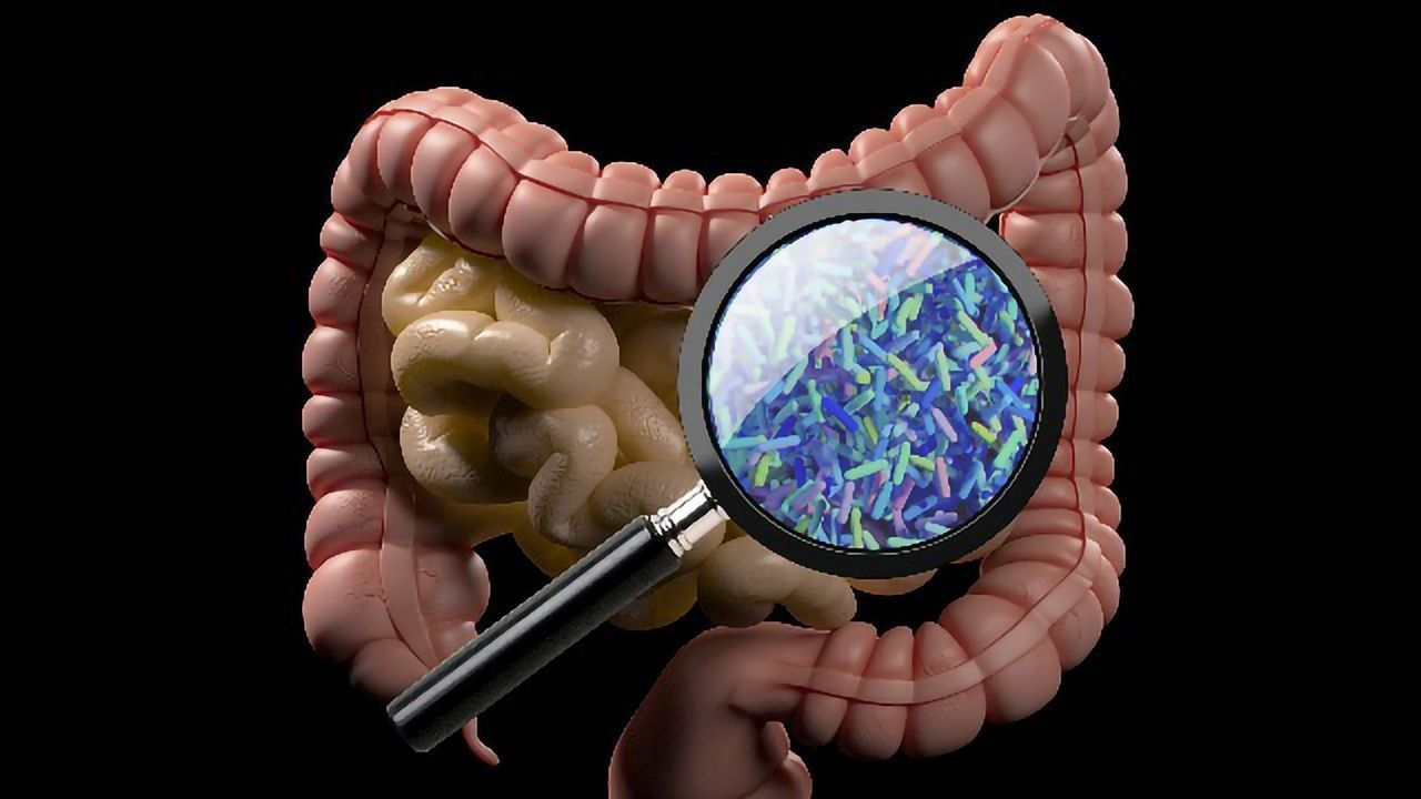 Gut Microbiota Composition Indicates Efficacy of Drugs in Inflammatory Bowel Diseases