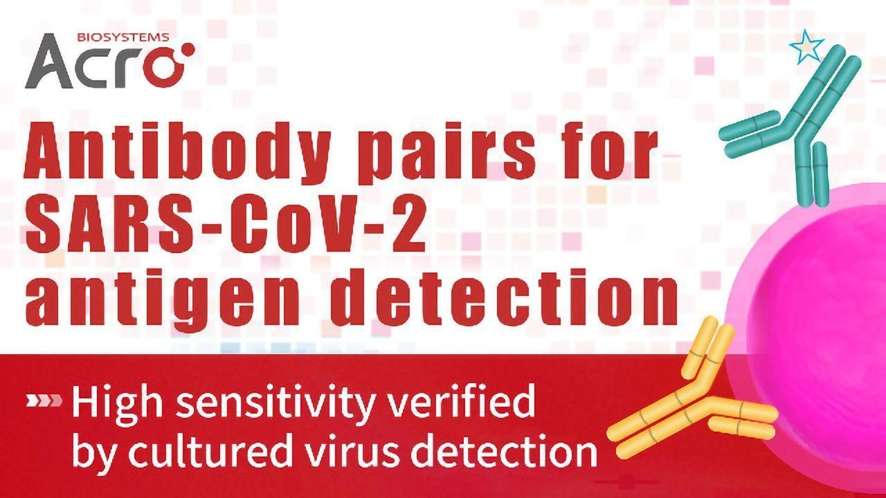 Antibody Pairs: High Sensitivity Verified by Cultured Virus Detection