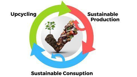 Food Waste Turned Back Into Food