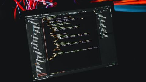 Coders' Brains Have Fine-Tuned Maps of Source Code