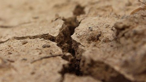 Valuable Chemicals Synthesized From Contaminated Soil