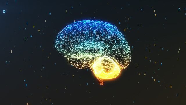 Do We Use 100% of Our Brain? Maybe There's No Need To