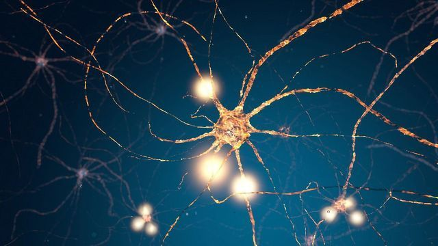 """Brain Cell """"Batteries"""" Linked to Autism Spectrum Disorders"""