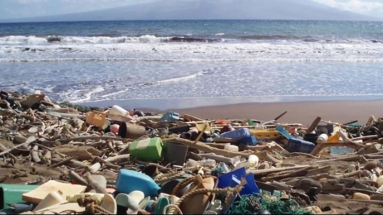 Are Ocean Plastics and Microplastics Increasing?