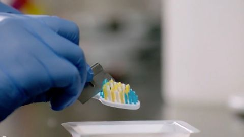 Your Toothbrush Mirrors You, Not Your Toilet