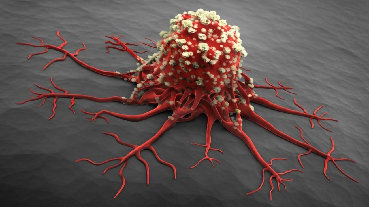 Bioadhesive Nanoparticles Developed To Deliver Chemo Cargo Inside Tumors