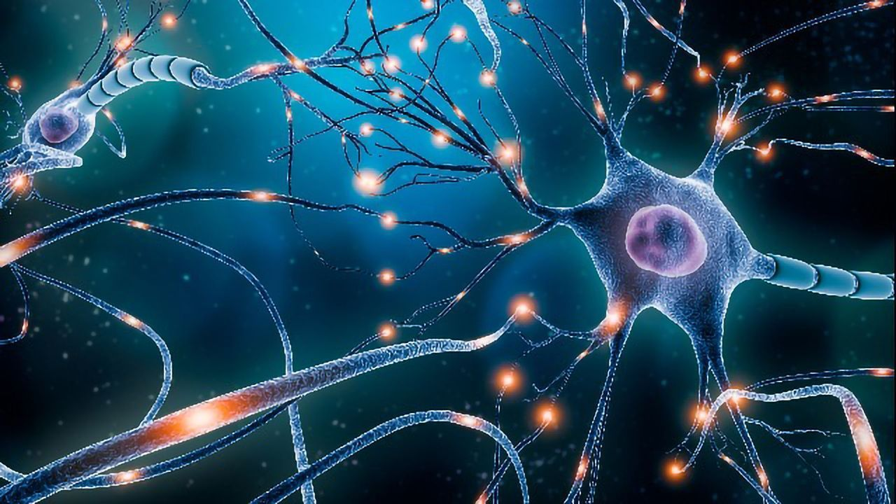 Brain Cell Loss Linked to Depression