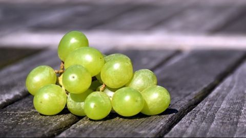 Eating Grapes May Help To Protect Skin From UV Damage