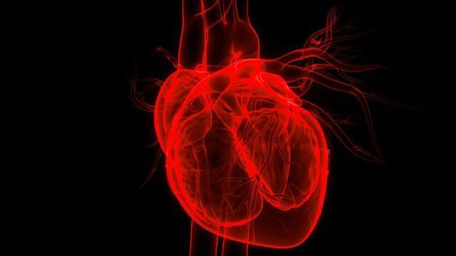 """A """"One-and-Done"""" Treatment To Protect Against Heart Disease?"""