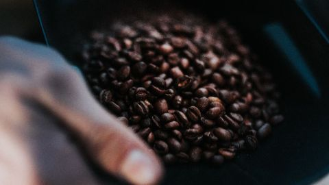 Caffeine Consumption in Pregnancy Linked to In Utero Brain Changes
