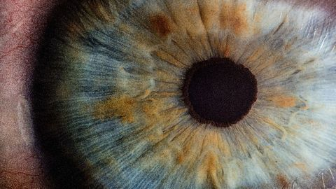 A Closer Look at Protein Packing in the Lens of the Human Eye
