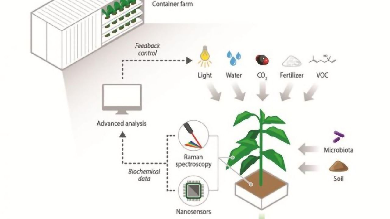 Next-Gen Technologies Key to Future of Traditional and Urban Agriculture