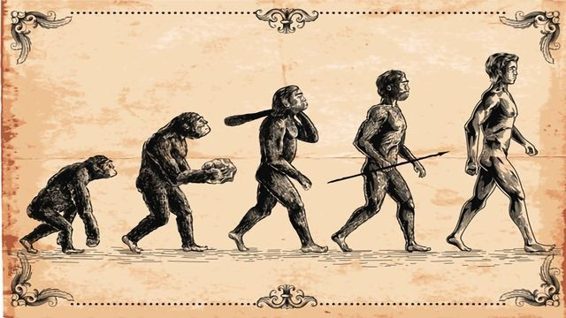 "Scientists Insert Neanderthal Gene Into Lab-Grown ""Mini Brains"""
