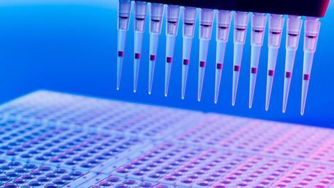 """PCR: The """"Workhorse"""" Technology"""
