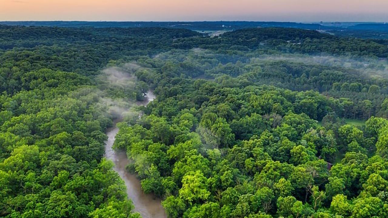 Amazon Climate Change Accelerated by Large-Scale Commodity Farming