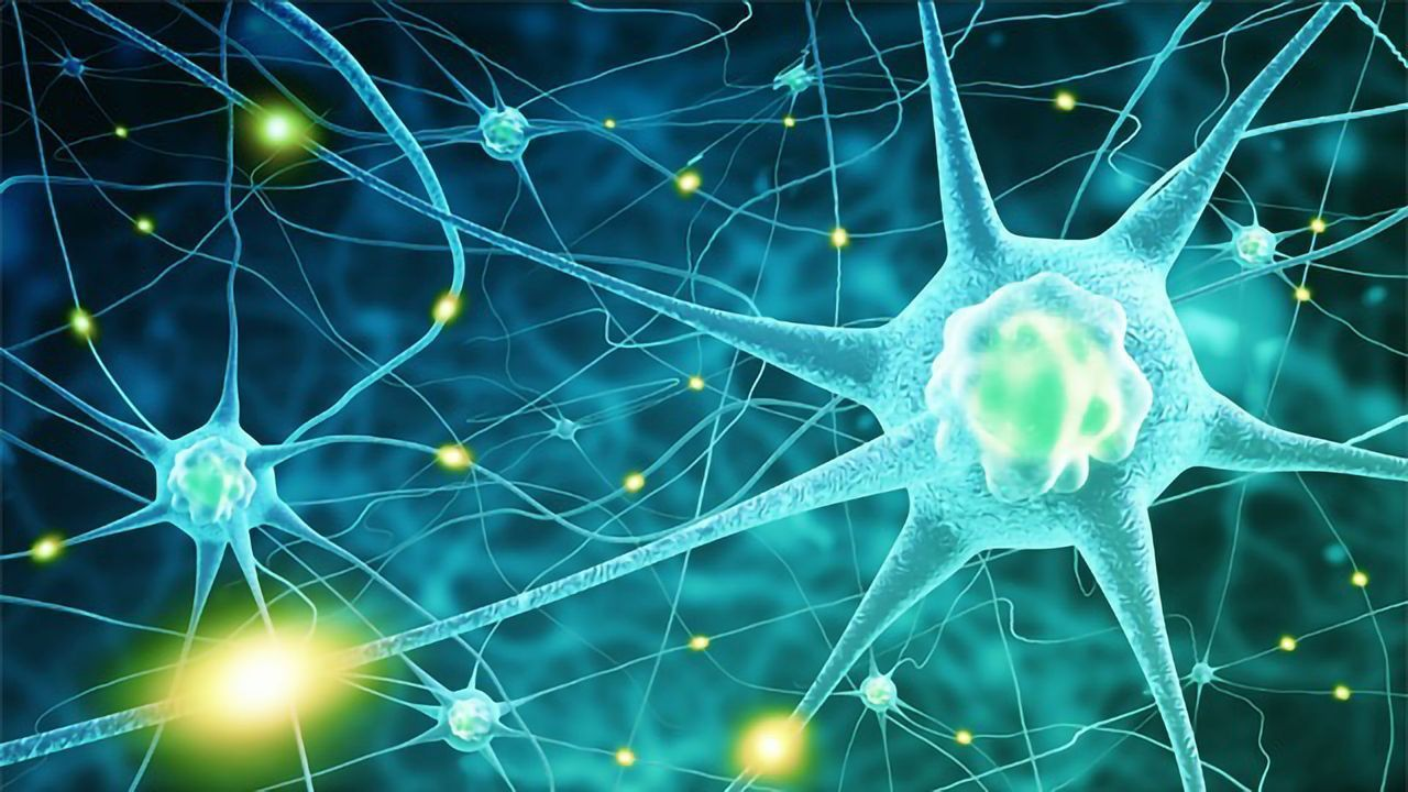 Star-Shaped Brain Cells Could Be Linked to Stuttering