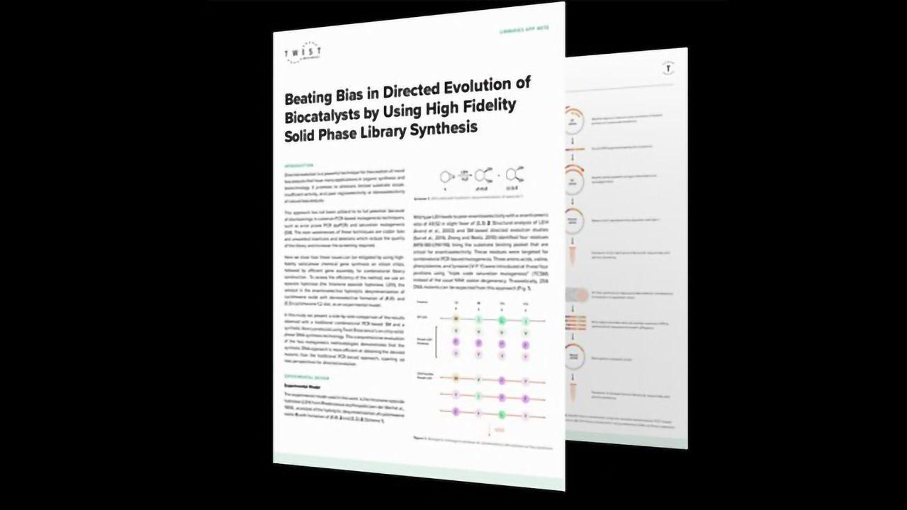 How To Beat Bias in Directed Evolution of Biocatalysts