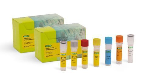 Reliance Select cDNA Synthesis Kit