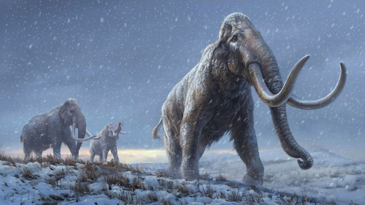 Scientists Extract and Sequence Million-Year-Old Mammoth DNA