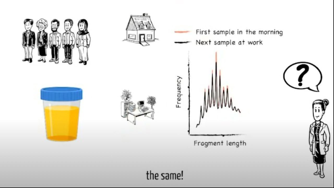 DNA in Urine for Liquid Biopsy of Cancer