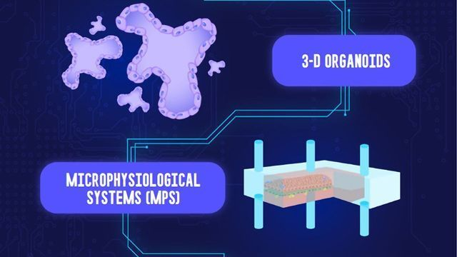 Microphysiological Systems
